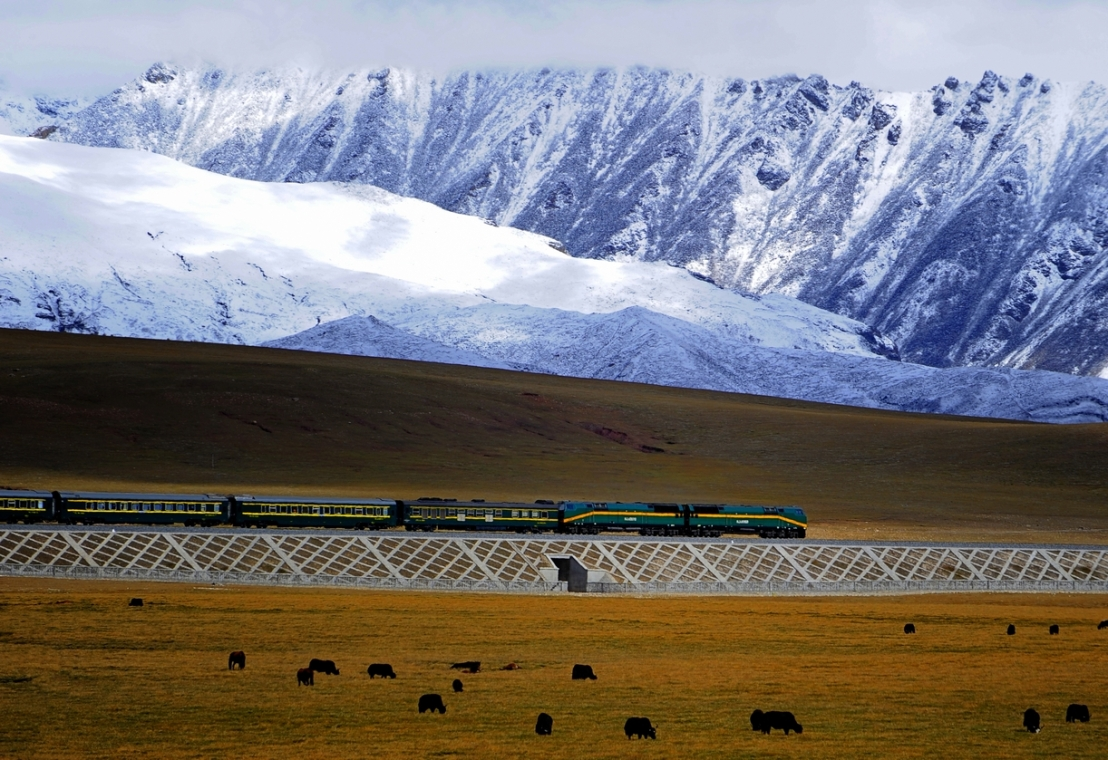 Qingzang_railway_Train_01